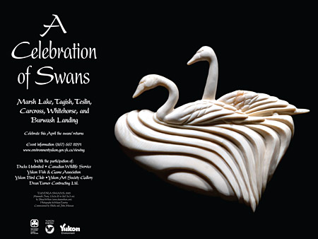 Celebration of Swans - Poster - Tundra Swans by Shane Wilson , 2005