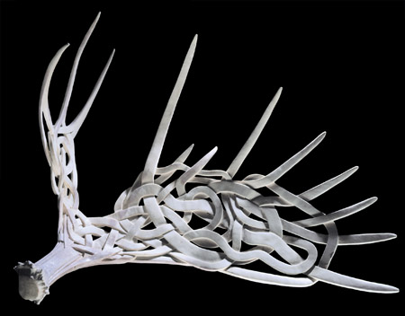Celtic Confusion - moose antler - 25x33x15in - 1998 - Shane Wilson