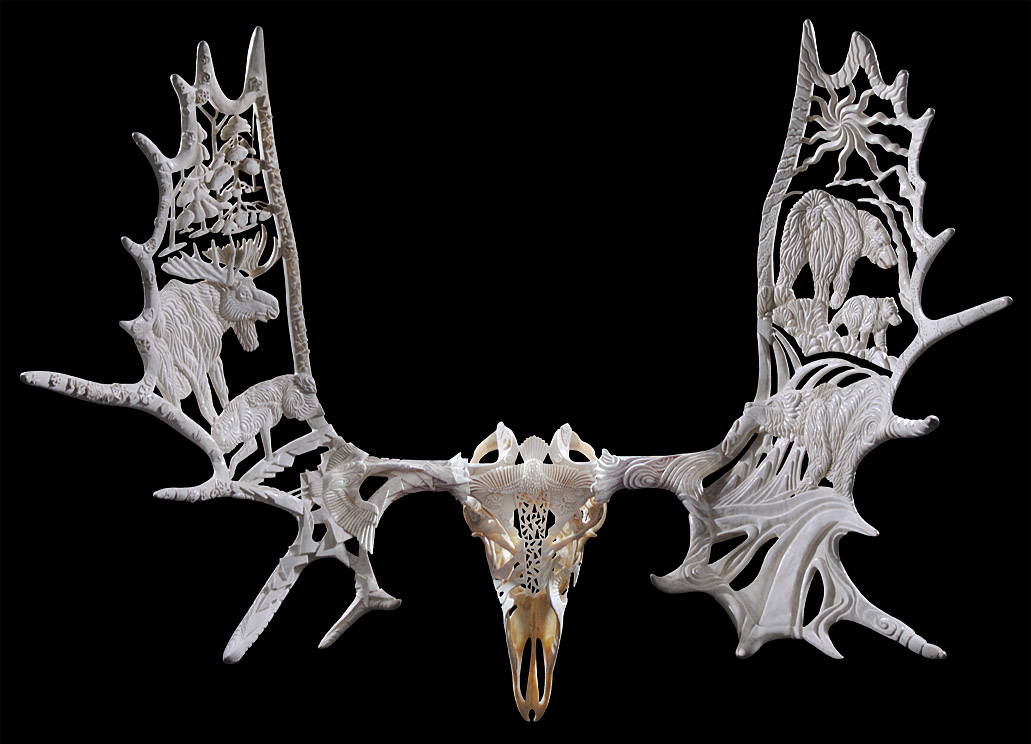 Yukon Seasons - moose antlers and skull - 44x47x24in - 2003 - Shane Wilson